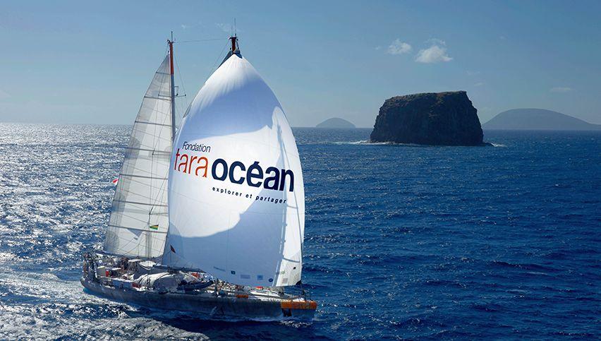 fondation tara ocean